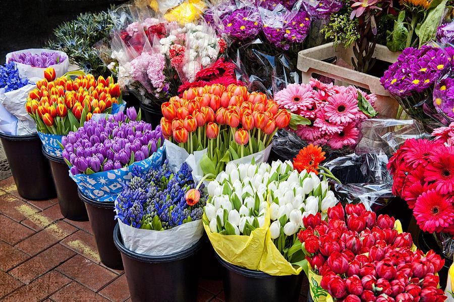 Где купить цветы дешево в москве
