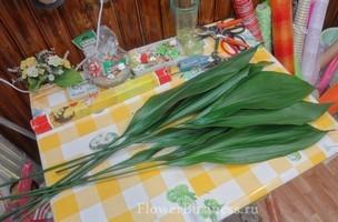 Растения для декора  Flowerindustry_ru_aspidistra_02