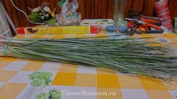 Растения для декора  Flowerindustry_ru_bergras_02