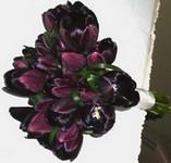 Цветок грустный букет из черных цветов фото рубцовске товары для