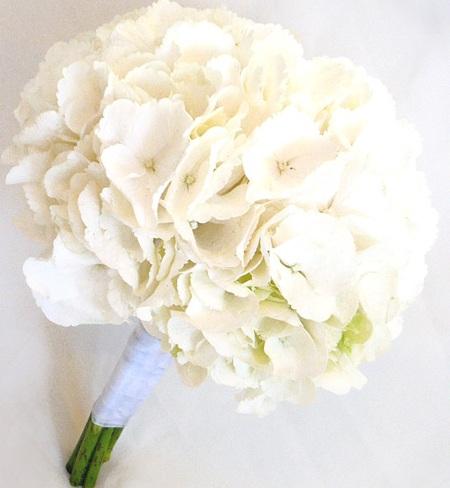 Гортензия букет свадебный