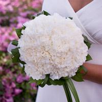 свадебный букет флористика белая гвоздика