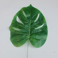 Растения для декора  Flowerindustry_ru_monstera_04