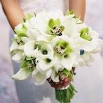 цветы орхидеи фото букет невеста