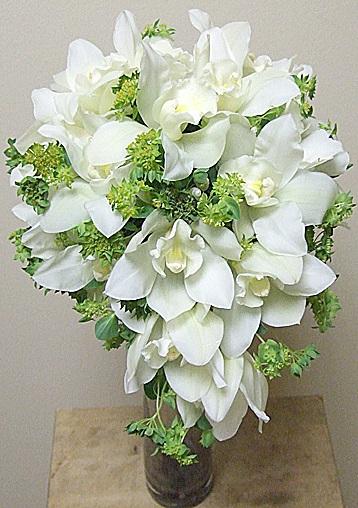 орхидеи цветы фото букет