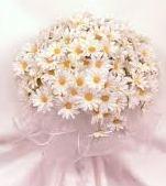 свадебный букет невесты флористика ромашка цветы свадьба