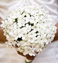 свадебный букет невесты флористика стефанотис цветы фото свадьба