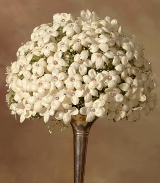 свадебные букеты стефанотис невеста цветы фото