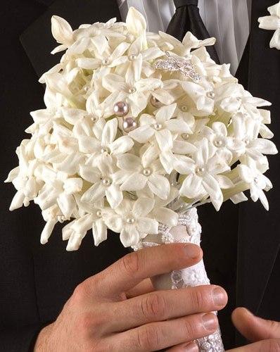 свадебные букеты картинки фото стефанотис