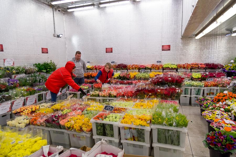 Оптом цветы купить где можно купить цветы в городе ростове